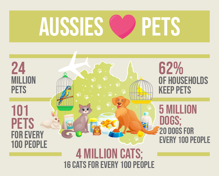 Moving To Australia? How To Import Your Pets